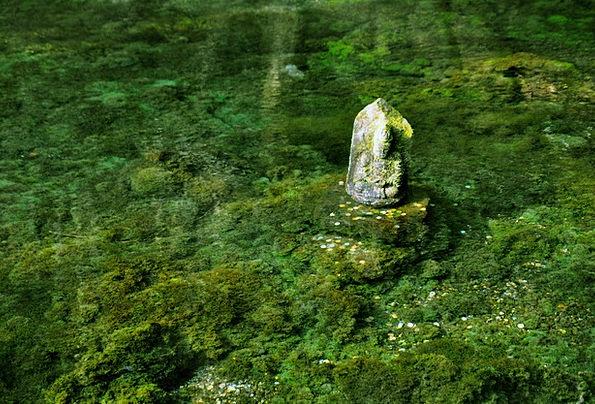 Aso Japan Kumamoto Water Aquatic Ikeyama River The