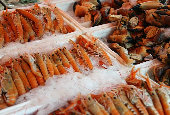 Animal Physical Delicious Delightful Crab Ingredie