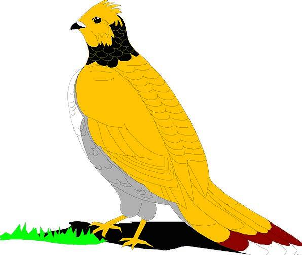 Grouse Complaint Fowl Grass Lawn Bird Wings Annexe