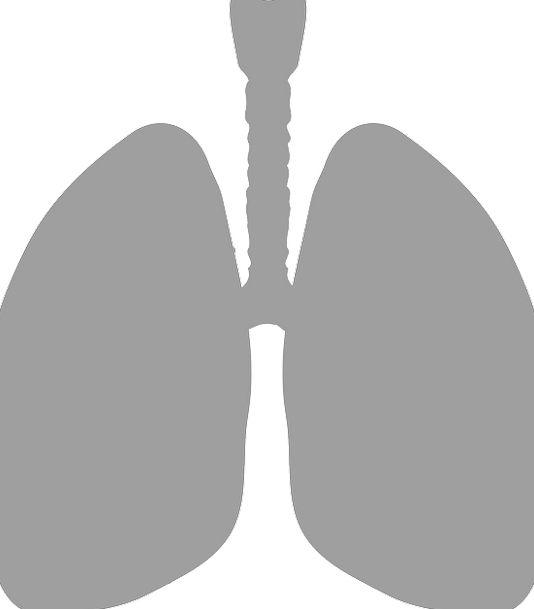 Lungs Drug Breathe Respire Medicine Oxygen Gray He