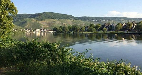 Mosel Landscapes Nature Kues Bernkastel Mirroring