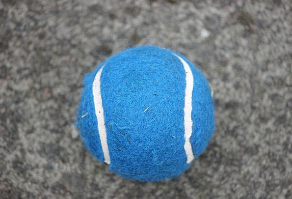 Tennis Ball Sphere Sport Diversion Ball Recreation