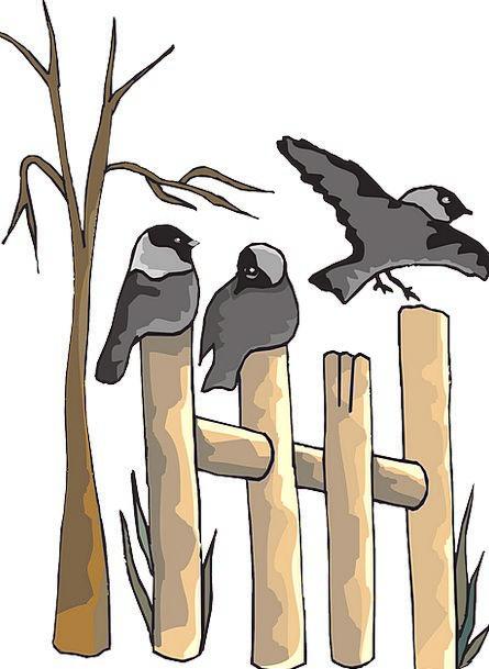 Dead Deceased Timber Tree Sapling Wood Birds Natur