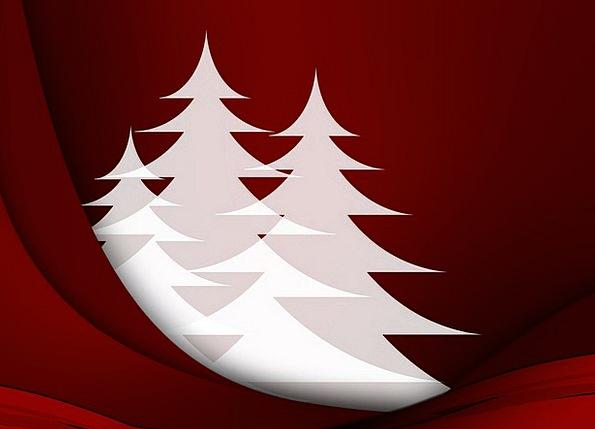 Greeting Card Christmas Fir Trees December White S