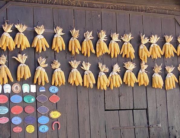 Corn Goo Outbuilding Alsace Barn