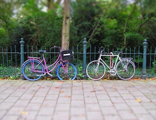 Bicycle Bike Amsterdam Holland Fuchsia Rose-colore