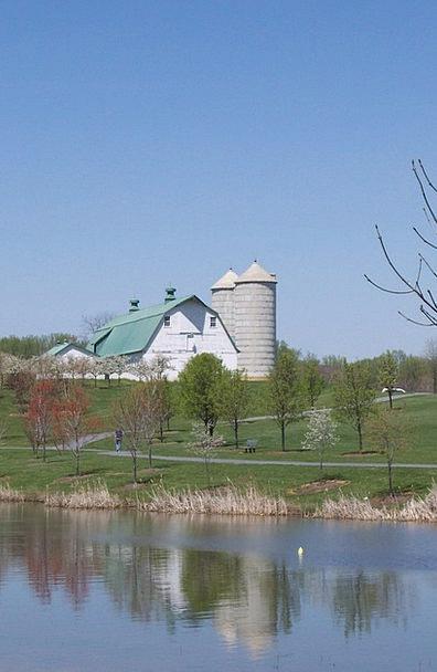 Farm Farmhouse Landscapes Nature Pond Pool Dairy R