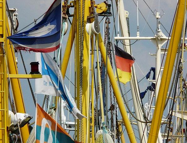 Fishing Boats Particulars Masts Poles Details Coas