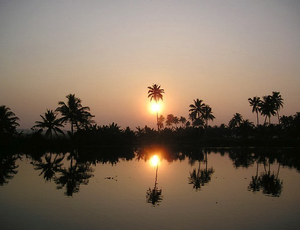 India Sonenuntergang Palm Trees Evening Twilight B