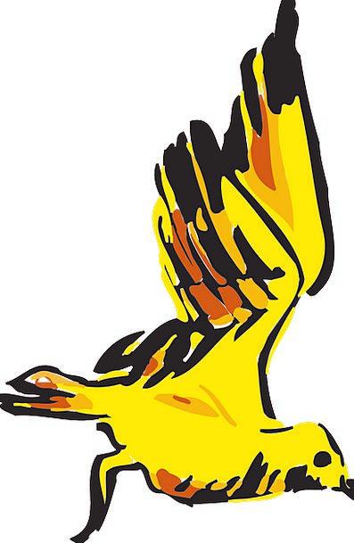 Bird Hovering Yellow Creamy Flying Free Vector Gra
