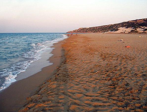 Turtle Beach Landscapes Nature Turkish Cyprus Summ