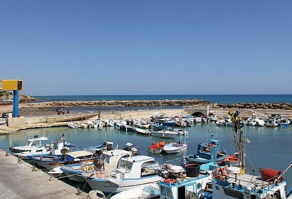 Boats In The Port Sicily The Mediterranean Sea Ita