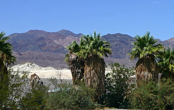 Death Valley Landscapes Nature Usa California Dune