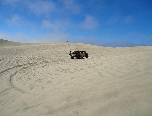 Pismo Banks California Dunes