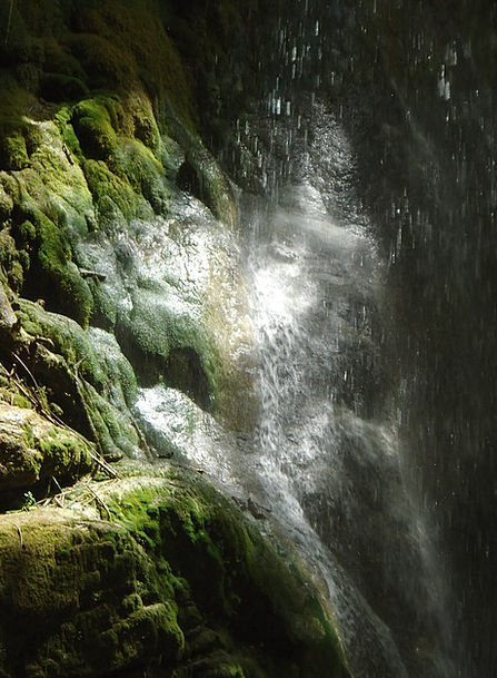 Moss Landscapes Cascade Nature Wet Rainy Waterfall