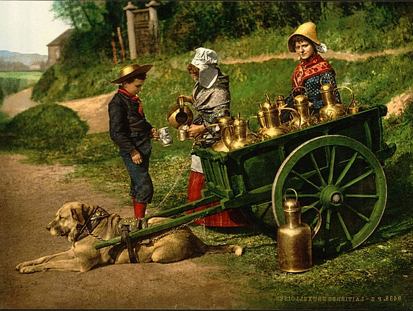 Milk Seller Being Boy Lad Person 1890'S Woman Lady