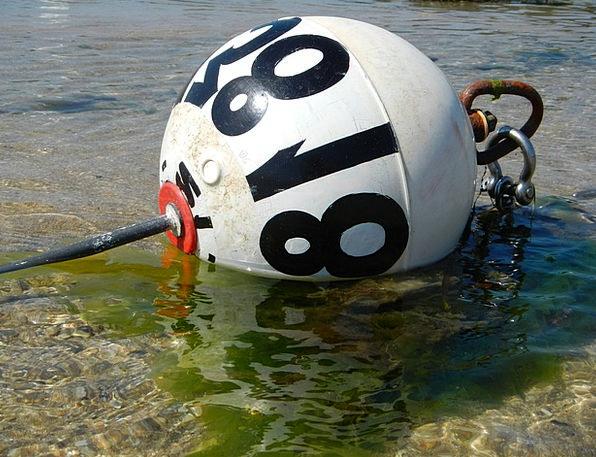 Boje Ebb Receding tide Brittany Sea Marine