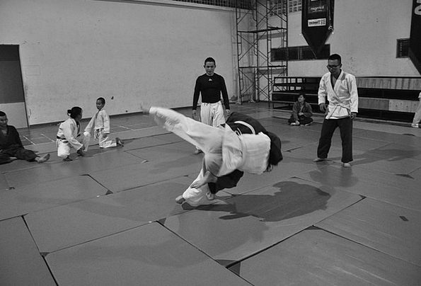 Judo Combat Battle Martial Arts Throw Toss Sport F