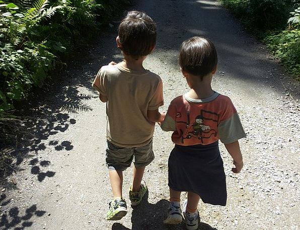 Children Broods Comrades Walk Gait Brothers Kids F