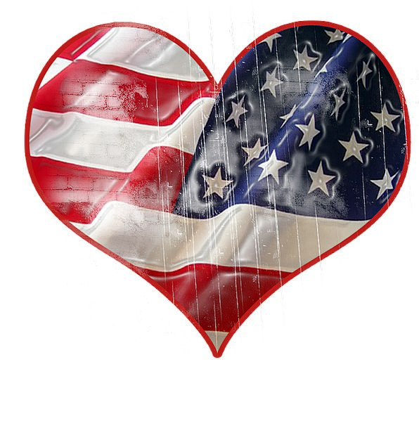 Patriotism Loyalty Heart Emotion Usa Patriotic Fla