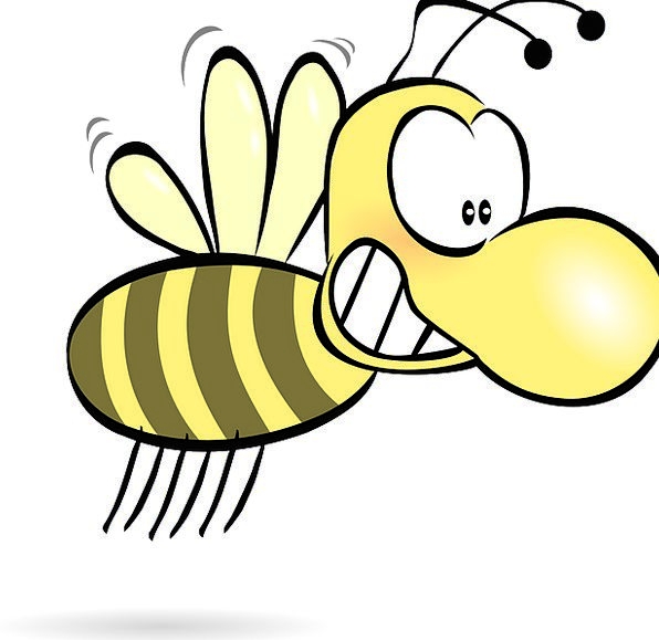 Bee Bug Cartoon Animation Insect Antenna Feeler Fr