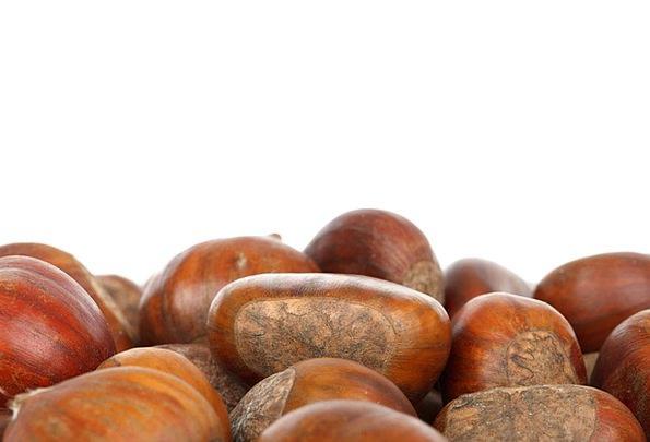 Autumn Textures Contextual Backgrounds Brown Choco
