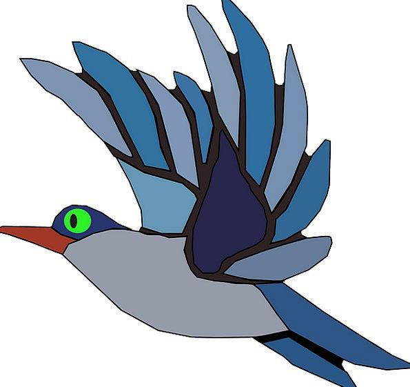 Birds Natures Bird In Flight Bird Flying Bluebird