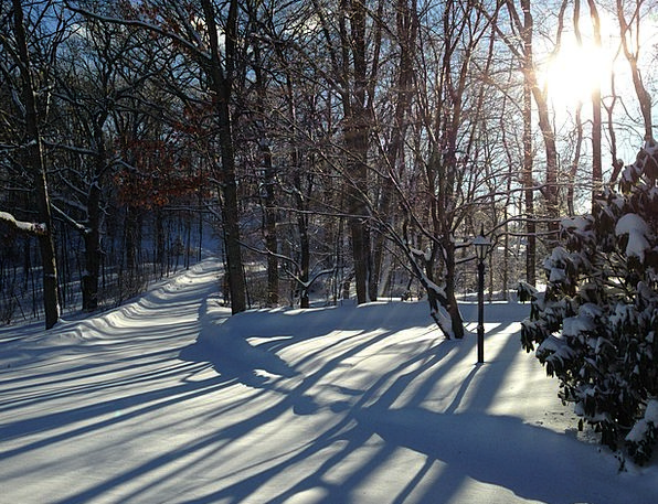 Nj Landscapes Season Nature Shadows Glooms Winter