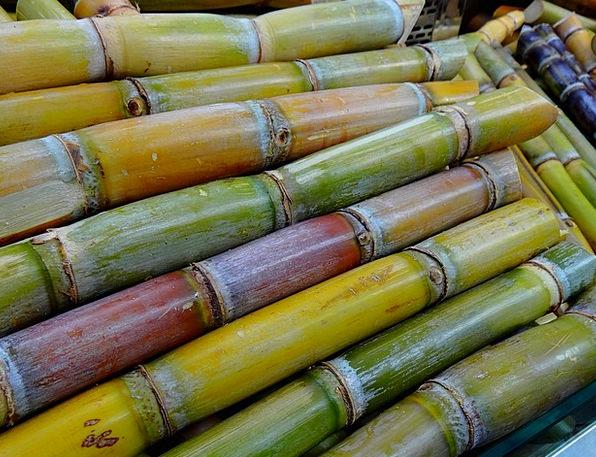 Sugar Cane Drink Food Stimulant Stimulating Licori
