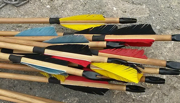 Arrows Missiles Feather Quill Wood Arrows Objectiv