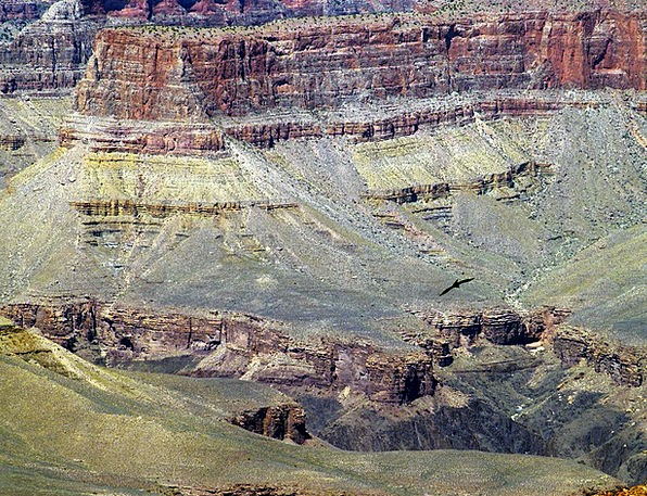 Grand Canyon Landscapes Nature Tourist Attraction