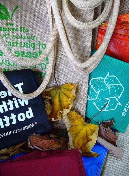 Bags Belongings Recycle Recycling Reprocessing Reu