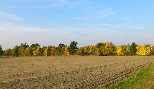 Autumn Fall Landscapes Countryside Nature Fall Fol