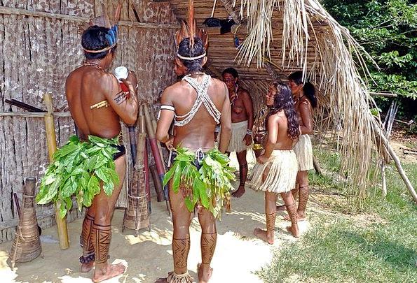 Amazon Indians Landscapes Forest Nature Brazil Rai