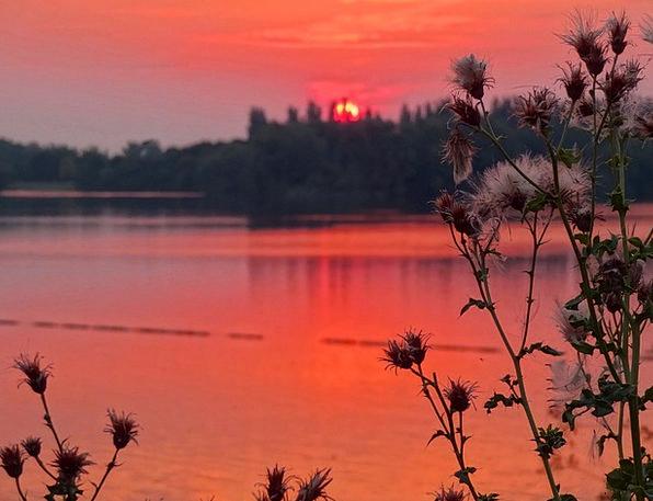 Sunset Sundown Vacation Travel Lake Freshwater Thi
