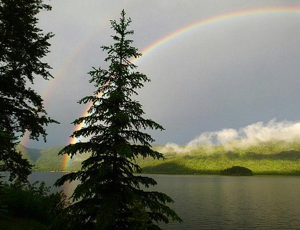 Double Dual Landscapes Multicolored Nature Canim L