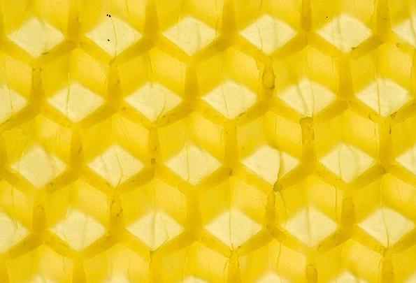 Beeswax Textures Darling Backgrounds Honeybee Hone