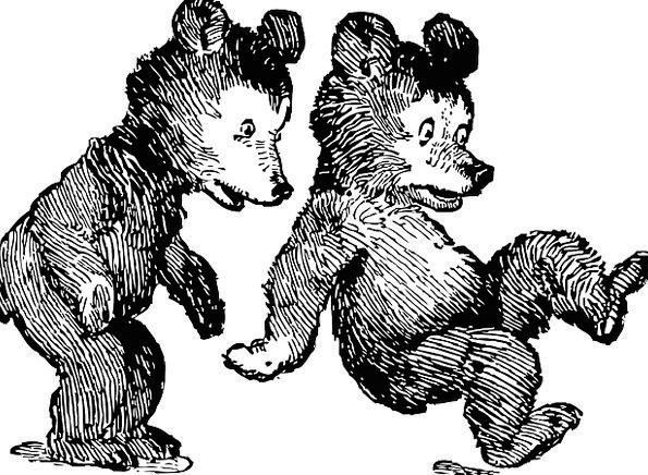 Bears Tolerates Novices Teddy Bears Cubs Ursidae C
