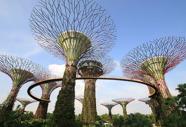 Garden Plot Buildings Architecture Supertree Garde