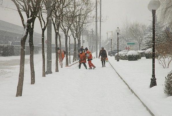 Snowfall Snowstorm Snowflake Shoveling Scooping Sn
