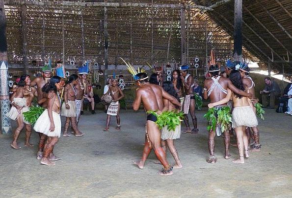 Brazil Forest Amazon Rainforest Rio Negro Indians