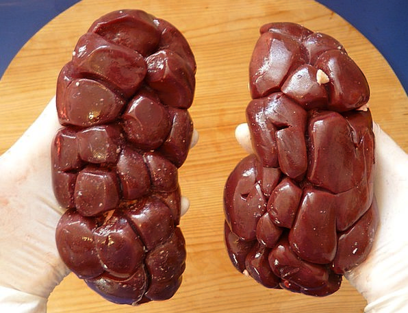 Bovine Kidney Drink Food Meat Essence Offal Kidney