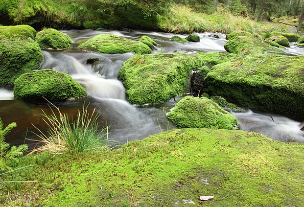 River Stream Landscapes Countryside Nature Water A