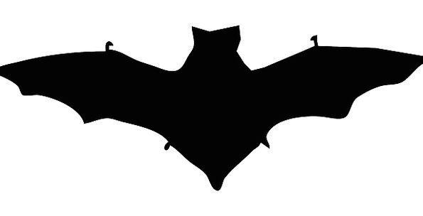 Bat Racket Silhouette Outline Dracula Mammal Creat