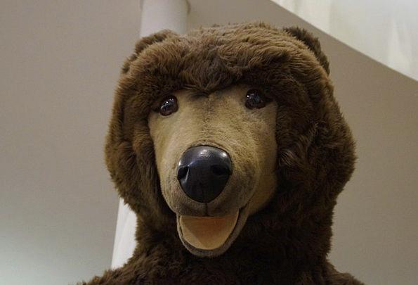 Bear Tolerate Teddy Bear Teddy Purry Brown Bear Cu