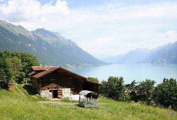 Bernese Oberland Landscapes Nature Lake Of Brienz