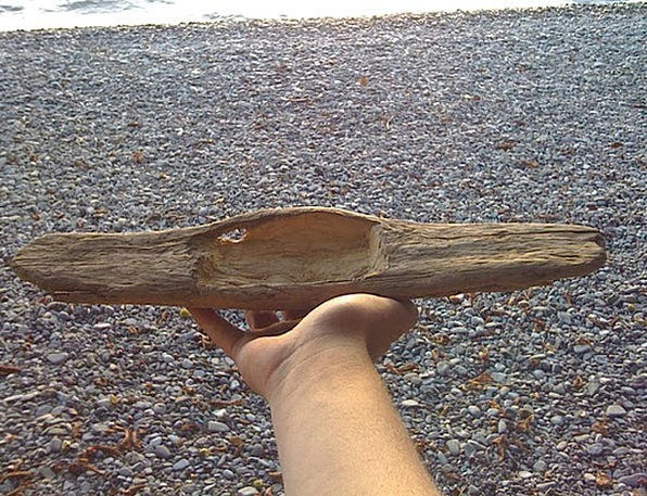 Driftwood Flotsam Vacation Model Travel Give Stret