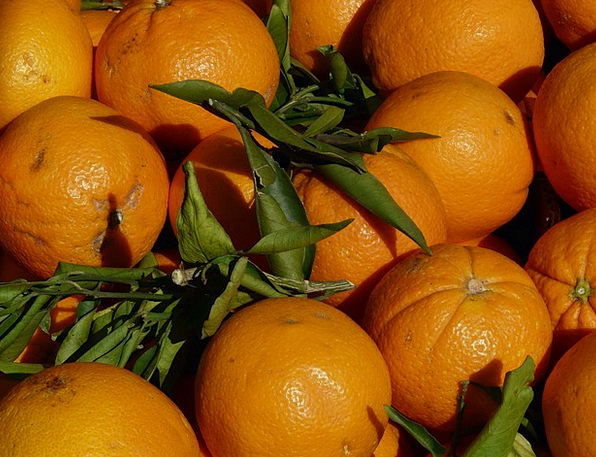 Oranges Drink Carroty Food Fruit Ovary Orange Clos