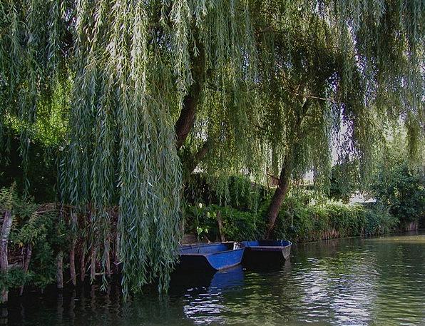 France Aquatic Rest Break Water River Stream