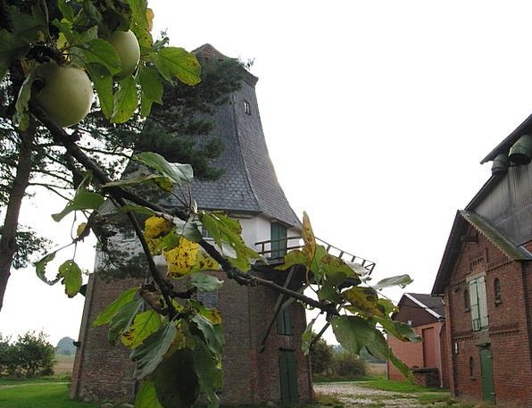 Mill Grinder Autumn Fall Windmill Apple